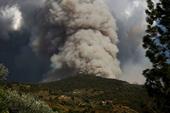Castelbuono l'incendio devastante del 1/09/14. Il giorno dopo in contrada Misericordia