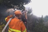 Castelbuono, Contrada Pedagni. Operazioni di spegnimento incendio del 21-09-2014