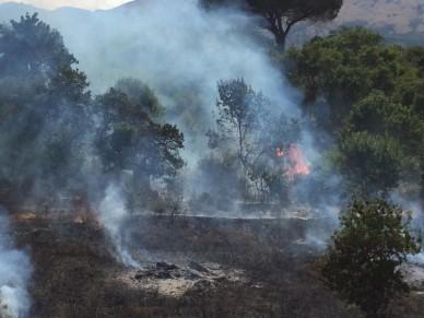 Castelbuono - Pericolosa bravata di un gruppo di ragazzini: danno fuoco alle sterpaglie causando un incendio - galleria foto