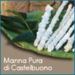 www.ilfrassino.it