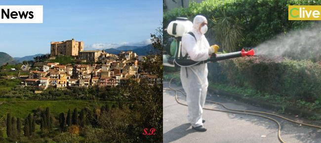 Disinfestazione e derattizzazione degli immobili comunali, del centro abitato e delle periferie di Castelbuono