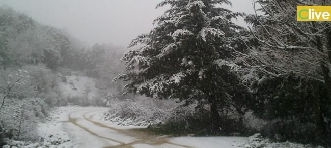 Ondata di freddo eccezionale: neve e gelo piombano nelle Madonie