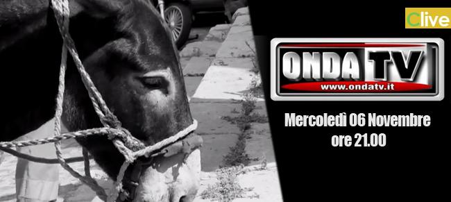 Mercoledì 6 Novembre alle ore 21.00 Castelbuono e gli asini spazzini su OndaTV