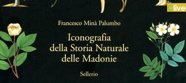 Presentazione dell'Iconografia della Storia Naturale delle Madonie di Francesco Minà Palumbo all'Accademia dei Lincei di Roma