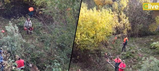 Operai forestali Castelbuonesi, un modello da imitare e da esportare
