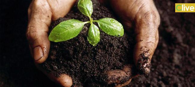 Castelbuono. Finanziata la costruzione di un impianto di compostaggio. Il Sindaco: «Ma ancora al Comune ufficialmente non è pervenuto niente»