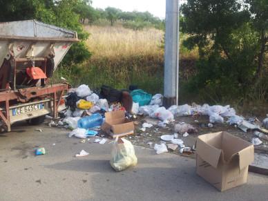 Conferimento dei rifiuti: quando il cittadino non fa  il suo dovere