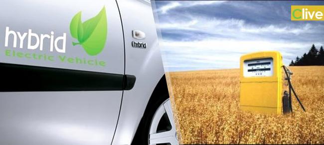 Auto ibride e biocarburanti di seconda generazione le proposte per tornare a investire nell'ex stabilimento FIAT
