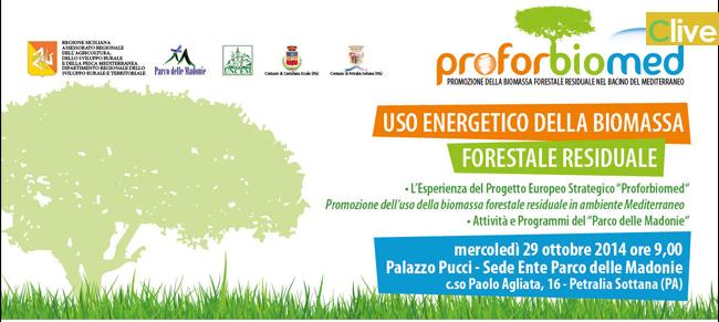 """""""Uso Energetico della Biomassa Forestale Residuale"""": domani il Workshop a Petralia Sottana"""