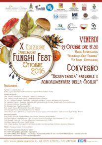 funghi-fest-2016-convegno-01